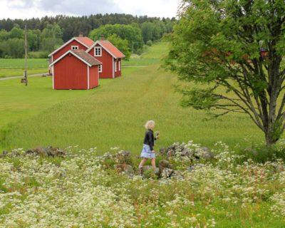 Midzomer Zweden