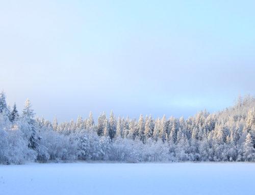 Paklijst voor een driedaagse wintertrektocht